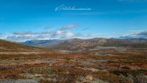 Parc national Dovrefjell-Sunndalsfjella