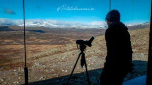 Observatoire du renne Snøhetta