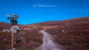 Randonnée dans le Norefjell