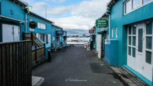 visiter le port de Reykjavik
