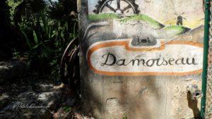 Distillerie Damoiseau guadeloupe