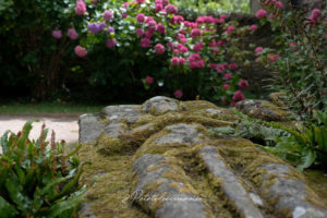 visiter abbaye de beauport paimpol