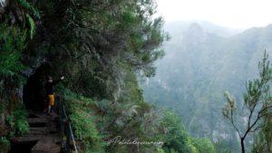 randonnée-madère-levadas